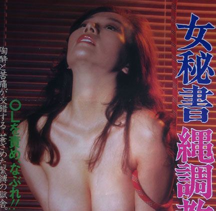 Dan Oniroku onna hisho nawa chyokyo