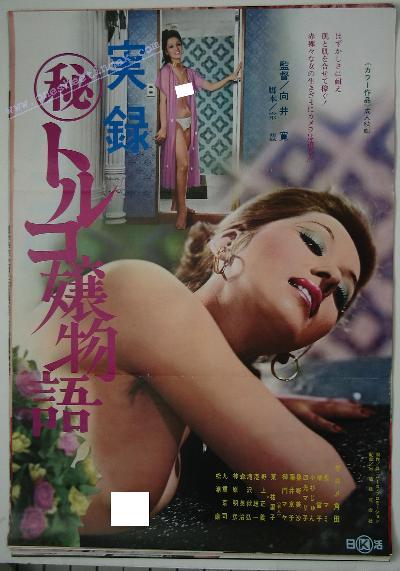 Jitsuroku Maru-hi Toruko-jo Monogatari